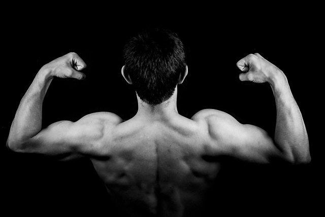 musculation et testostérone