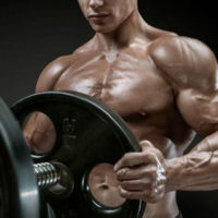 QU'est-ce que la testostérone biodisponible et la différence avec la testostérone totale?