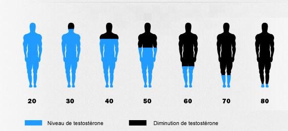 taux de testostérone baisse