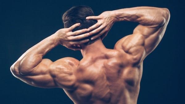 programme et exercices musculation épaules