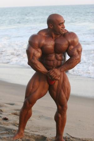 bodybuilding et entrainement